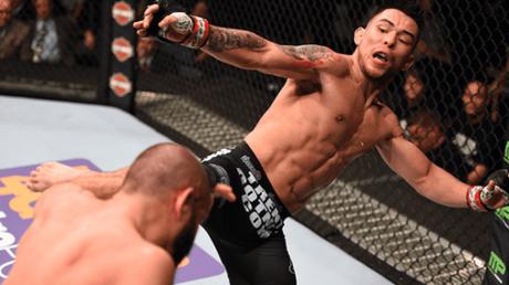 Ray Borg estava escalado para enfrentar Demetrious Johnson no UFC 215