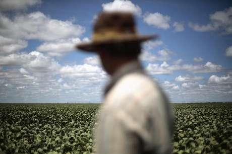 Produtor observa lavoura de soja em Barreiras, no Estado da Bahia, Brasil 06/02/2014 REUTERS/Ueslei Marcelino