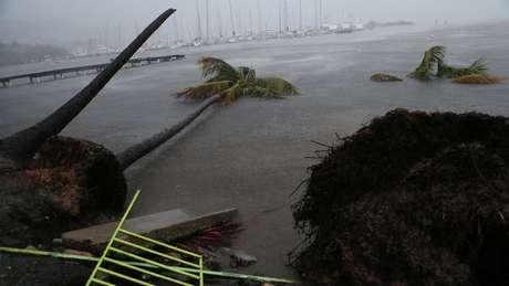 Porto Rico após o furacão Irma