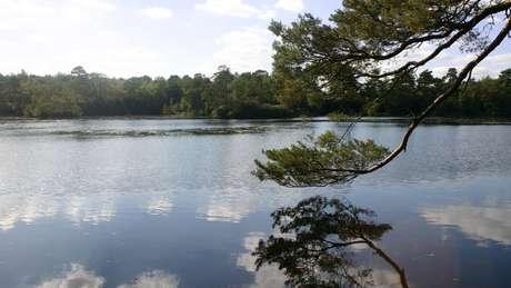 Como o movimento das placas tectônicas libera gases, águas de lagos e rios mais estanques podem mudar o cheiro.