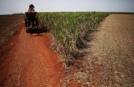 Colheita de cana-de-açúcar em canavial em Ribeirão Preto, no Estado de São Paulo, Brasil 15/09/2016 REUTERS/Nacho Doce