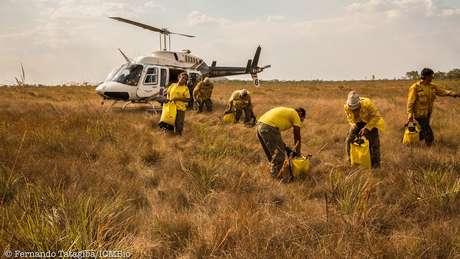 Há pedidos de ajuda para compra de equipamentos | Foto: Fernando Tatagiba/ICMBio