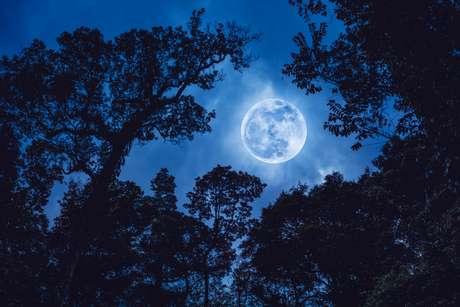Lua Cheia influencia todos os signos em um setor específico neste mês de novembro