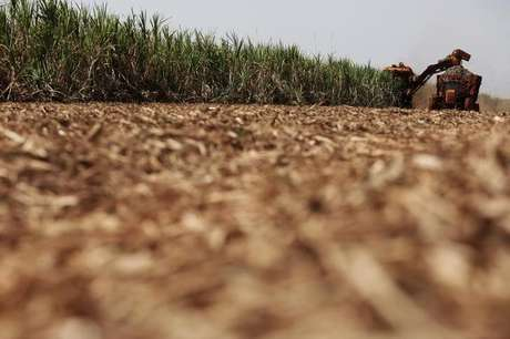 A combine harvester cuts sugar cane in a field on the property of Grupo Moreno in Ribeirao Preto, northeastern region of the state of Sao Paulo, Brazil, September 15, 2016. Picture taken September 15, 2016. REUTERS/Nacho Doce