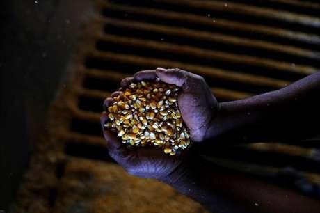 Homem segura grãos de milho perto de Sorriso, no Mato Grosso 26/07/2017 REUTERS/Nacho Doce