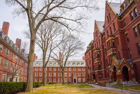 Harvard é investigada por discriminar asiáticos