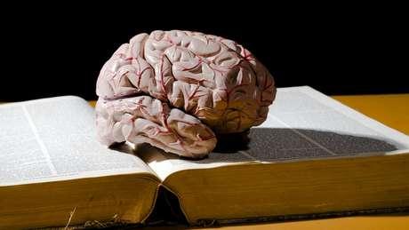 Para registro na memória de longo prazo, é preciso treinar ortografia, semântica e fonética das palavras