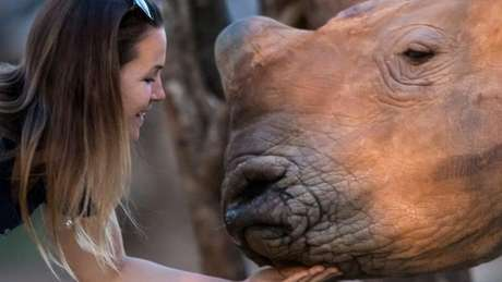 Veterinária faz carinho em rinoceronte cuidado pela organização Rhino Revolution, na África do Sul | Foto: Neil Aldridge