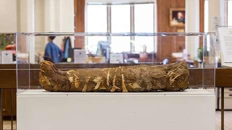 Múmia foi escavada em 1911 e levada para Chicago, nos Estados Unidos   Foto: Northwestern University