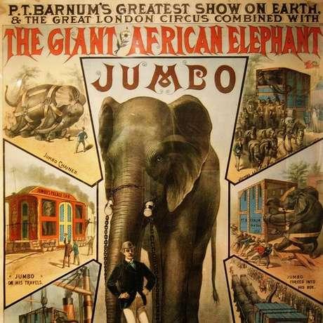 Jumbo, 'o maior elefante do mundo', foi uma grande atração nos dois lados do Atlântico | Foto: Wiki Commons