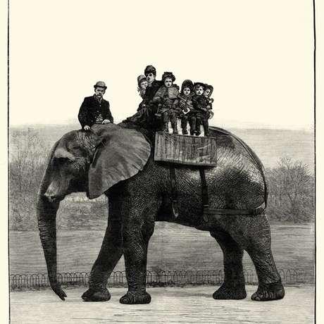 Jumbo era muito popular entre as crianças, incluindo os filhos da rainha Victoria | Foto: Wiki Commons
