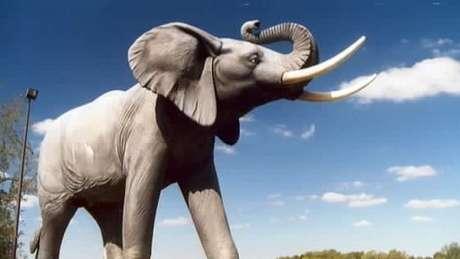 Jumbo ganhou estátua em St. Thomas, em Ontário, no Canadá, onde o célebre elefante morreu | Foto: Wiki Commons