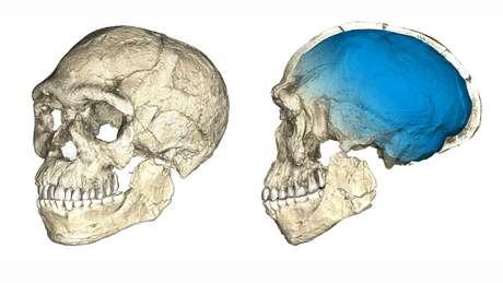 Homo Sapiens teria surgido cerca de 100 mil anos antes do que se pensava, segundo nova descoberta | Foto: Philipp Gunz/MPI EVA Leipzig