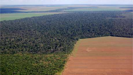 """Vista aérea da Amazônia, no Brasil: Destruíção de áreas na floresta é apontada como """"alarmante"""", mesmo com ritmo reduzido"""
