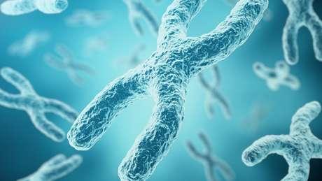 A doença está vinculada a uma mutação no cromossomo X