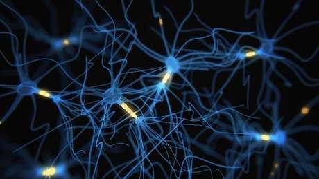 Nas pessoas que sofreram estresse tóxico na infância, as áreas do cérebro dedicadas à aprendizagem e à razão têm conexões neurais mais fracas e escassas