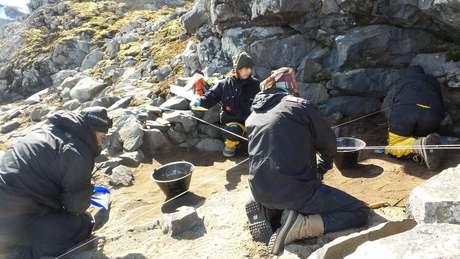 A pesquisa, que já acumula mais de mil itens coletados, é liderada pelo Laboratório de Estudos Antárticos em Ciências Humanas da UFMG | Foto: Leach/Divulgação