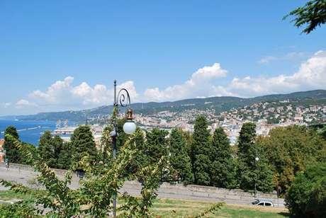 Cidade de Trieste multa em 500 euros quem sobre em árvore