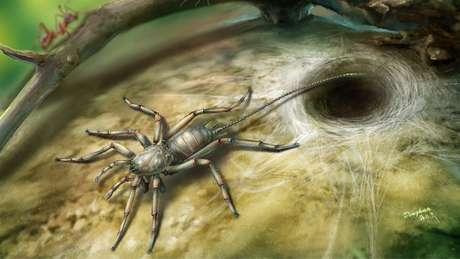 Aracnídeo, que viveu há 100 milhões de anos, lembra uma aranha como uma cauda   Ilustração: Bo Wang