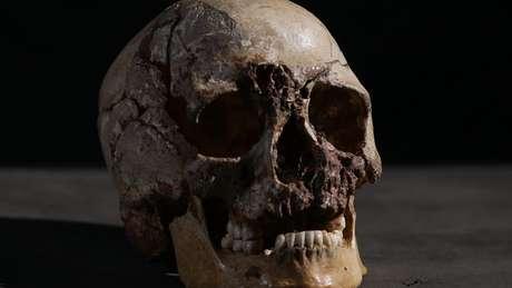 Análise do DNA foi feita a partir do crânio, mais precisamento do osso petroso | Foto: Channel 4