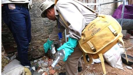 Em período de chuvas e calor, a existência de focos de Aedes alcança 5% das casas brasileiras | Foto: Erasmo Salomão/MS