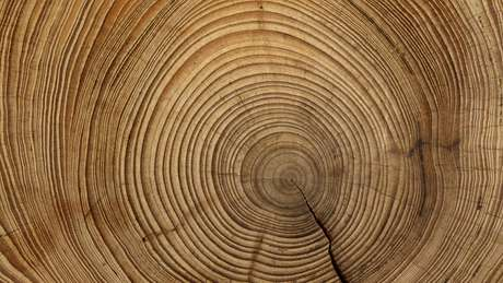 Técnica comprime buracos e falhas da madeira