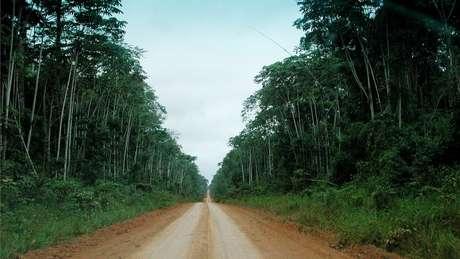 Unidades de conservação que têm perdido proteção do governo brasileiro costumam ser as mais próximas a estradas, vilarejos ou rios