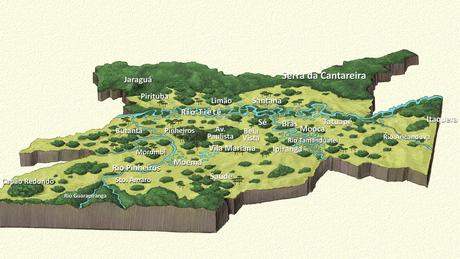A BBC Brasil elaborou um mapa inédito da flora paulistana original marcada pela diversidade de biomas antes da colonização | Ilustração: Leandro Lopes de Souza