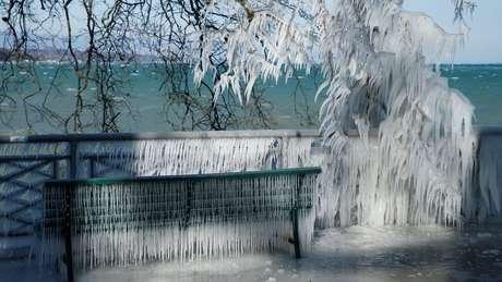 Em Genebra, na Suíça, até as plantas ao lado do lago congelaram