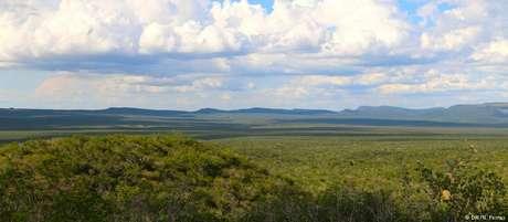 Boqueirão da Onça: faixa mais longa da caatinga ainda preservada