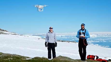 Os drones foram usados para identificar os ninhos de pinguins | Foto: C.Youngflesh/SBU