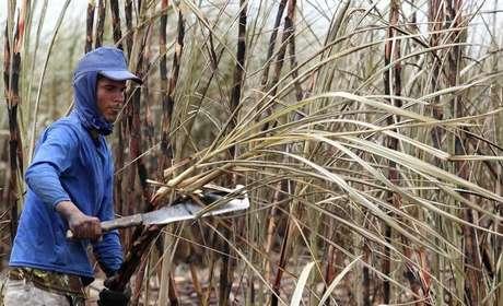 Trabalhador corta cana de açúcar em plantação em Campos dos Goytacazes, no estado do Rio de Janeiro, Brasil 10/11/2010 REUTERS/Sergio Moraes