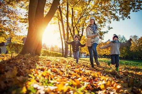 Outono é o momento de renovação e de novas oportunidades