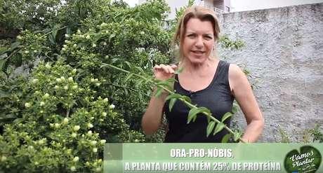 Olga Bongiovanni transformou o quintal de sua casa em cenário para a gravação de vídeos sobre o cultivo de alimentos.