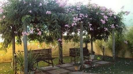 10. Se quiser um um jardim bem aconchegante, pode fazer um pergolado de madeira