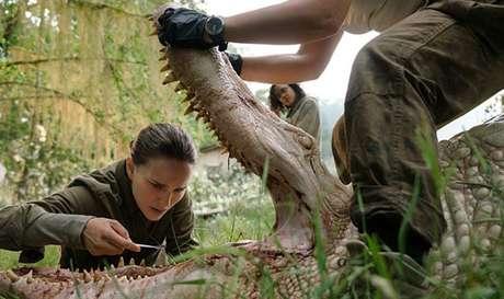 Natalie Portman em 'Aniquilação'