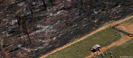 Pará foi o estado com o maior número de assassinatos em conflitos agrários no ano passado