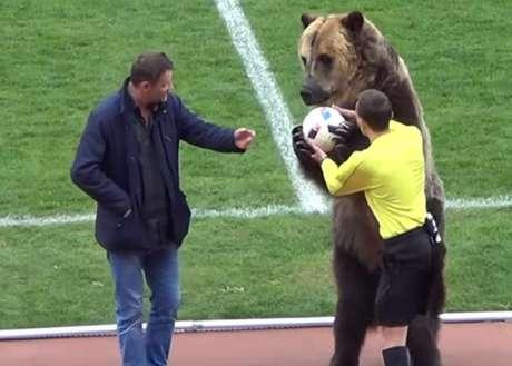 Urso estava com focinheira e ao lado do domador (Foto: Reprodução)