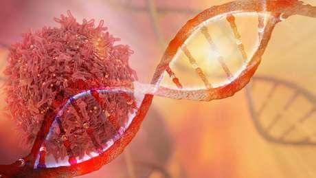 Síndrome, que vitimou o ex-vice-presidente José de Alencar, é causada por uma mutação no gene TP53, que age como supressor de tumores