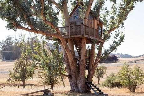 11. Em alguns projetos, a casa ocupa mais de uma árvore