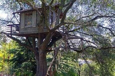 25. Casa na árvore com escada longa