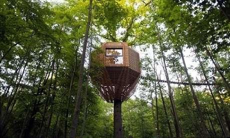 10. Com tudo isso em mente e o auxílio de um profissional, você pode ter sua própria casa da árvore