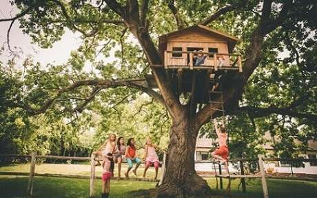 3. Uma casa na árvore é o sonho de muitas crianças