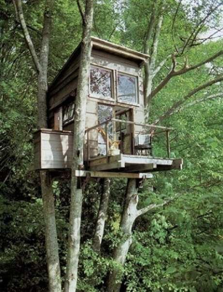 12. A madeira usada na casa combina perfeitamente com a árvore