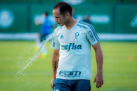 Pascoal: Palmeiras pode ter apenas dois titulares contra o Junior Barranquilla