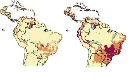 Os dois mapas mostram as mudanças que ocorrerão até 2100 na duração da temporada de transmissão da dengue, que resultam em maior número de casos da doença na América Latina; o mapa da esquerda indica a situação caso o aquecimento global seja limitado a 1,5 ◦C e o mapa da direita mostra a intensificação e alastramento da doença caso o aquecimento chegue a 3,7◦C.