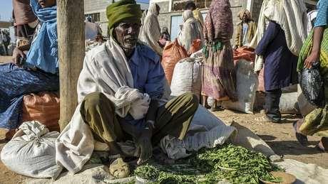 A popularidade das folhas de khat, que tem efeito estimulante, ajuda a explicar o baixo índice de fumantes na África