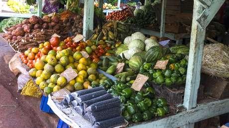 Segundo a FAO, 90 mil moradores de Havana se dedicam a alguma forma de agricultura