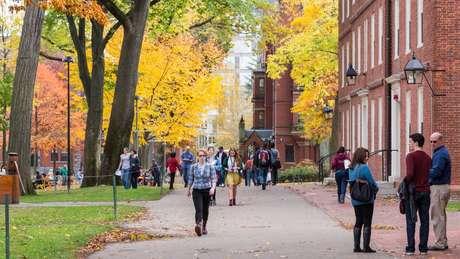 Universidades da Ivy League, como Harvard, não concedem bolsas de estudos a atletas