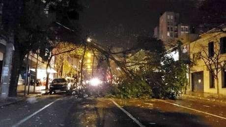 Em Caxias do Sul, a intensidade do vento foi tão forte que derrubou árvores